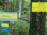 Drachenwand - Lesní ukazatel
