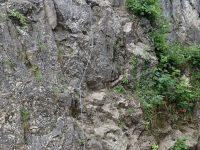 City Wall Klettersteig - Salewa Route