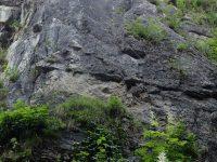City Wall Klettersteig - Kapuziner Gams