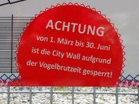 City Wall Klettersteig