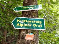 Alpiner Grat