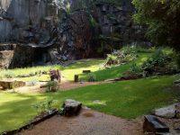 Je zde i hřiště na petangue.