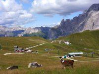 Via ferrat Col Rodella - přístup od Passo Sella